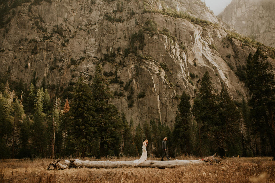 yosemite log couple el cap elopement by BreeAnna Lasher