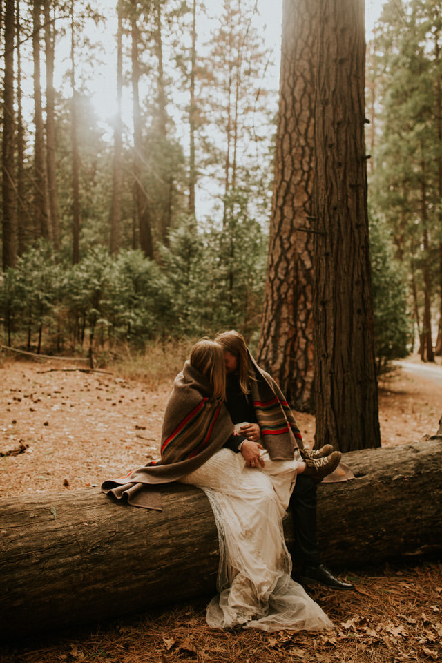 yosemite national park forest elopement photography