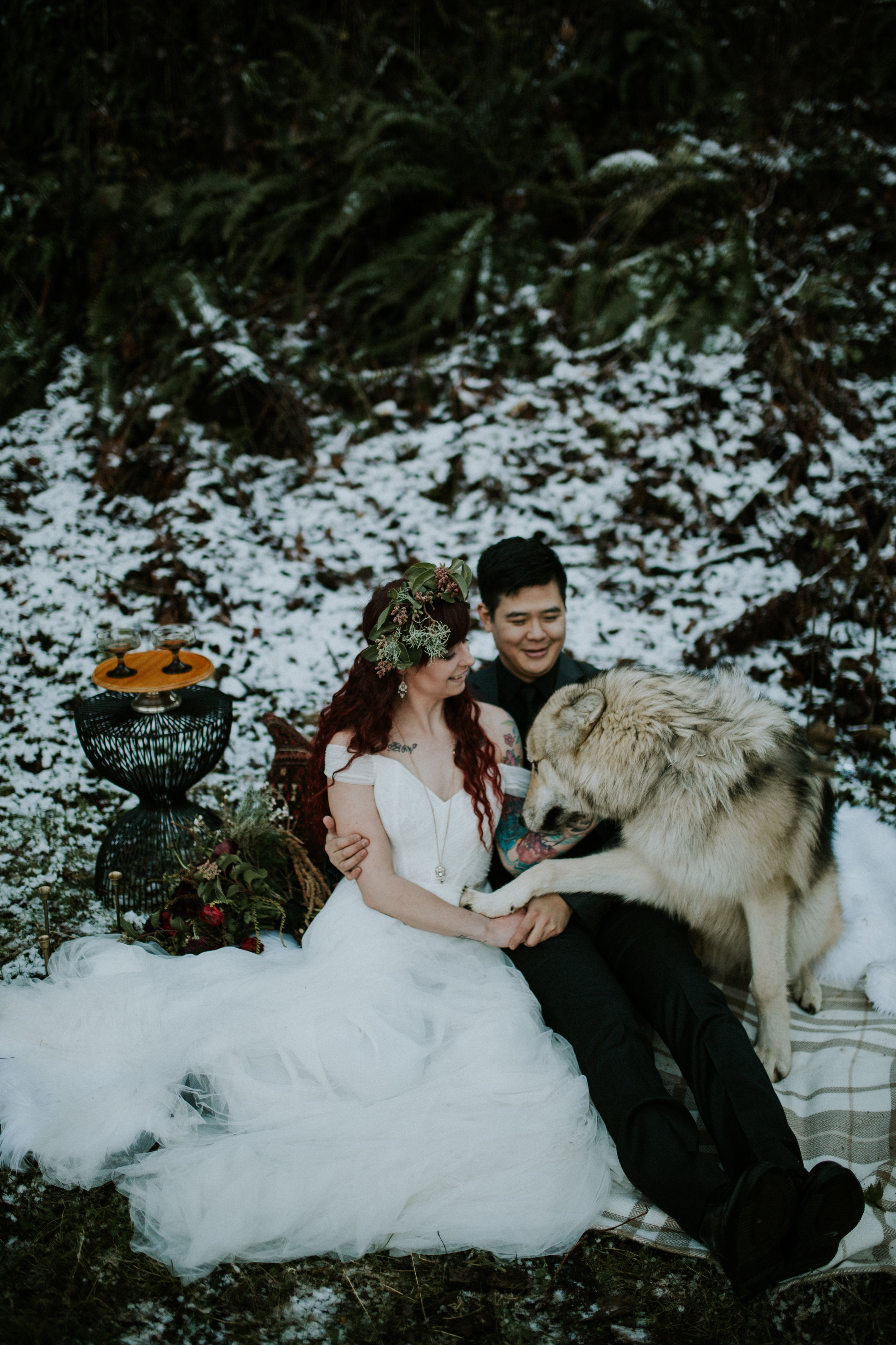 latourel falls at columbia river gorge elopement with wolf by BreeAnna Lasher