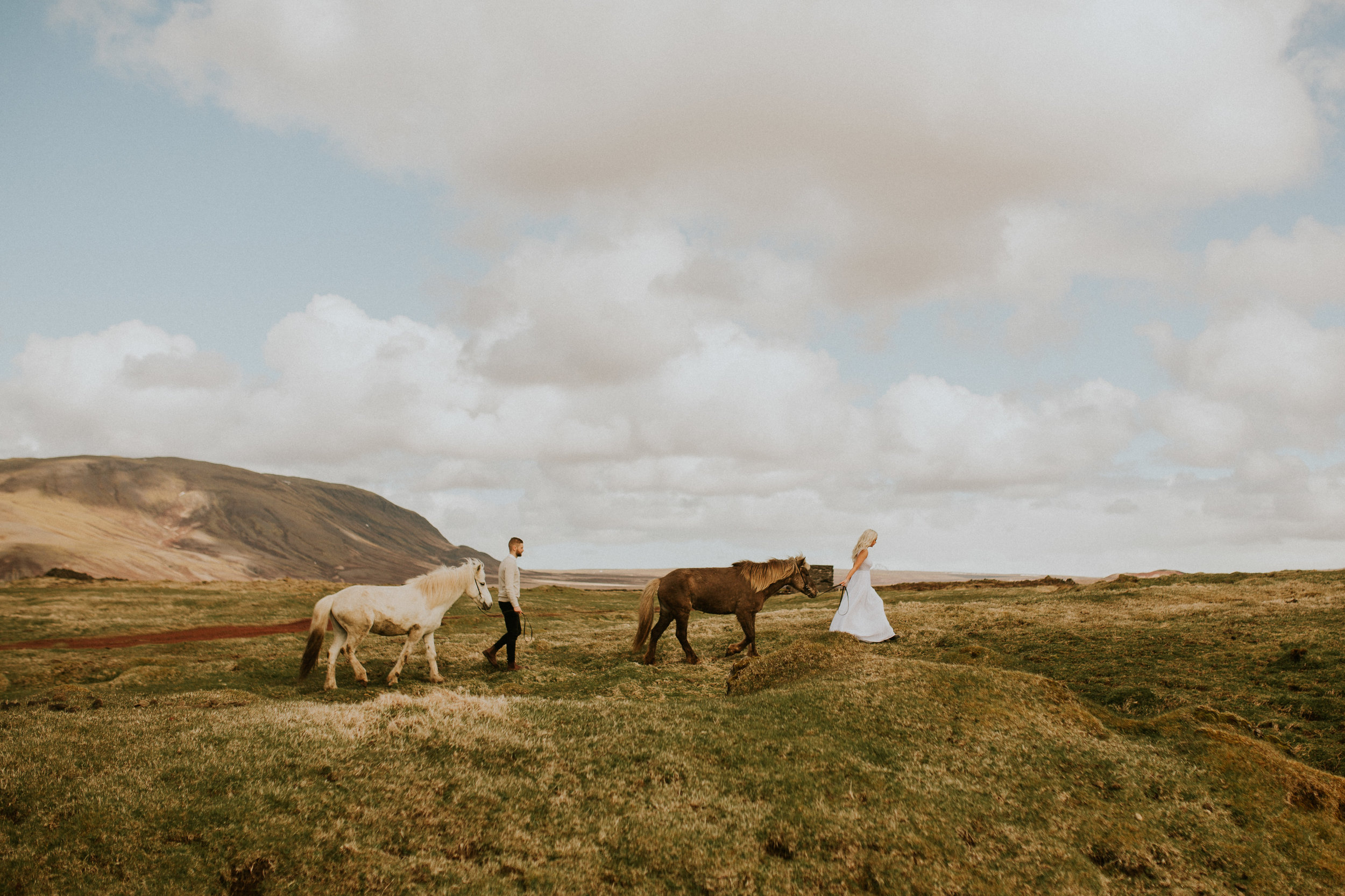 iceland countryside elopement with ponies by photographer breeanna lasher