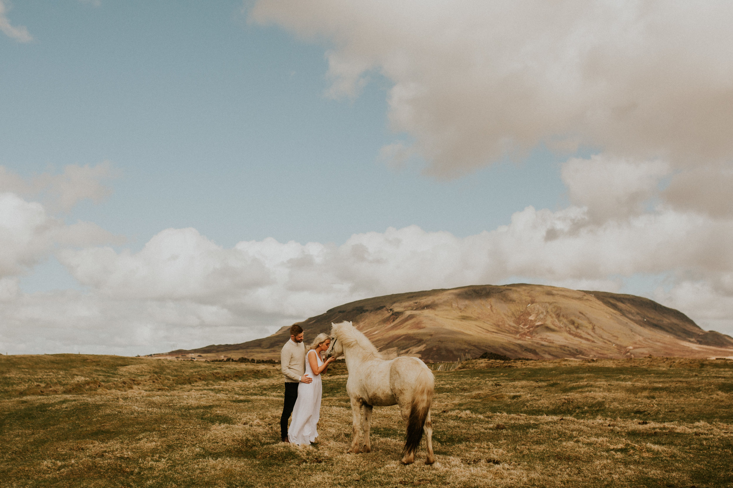 iceland elopement on icelandic horse farm by photography breeanna lasher