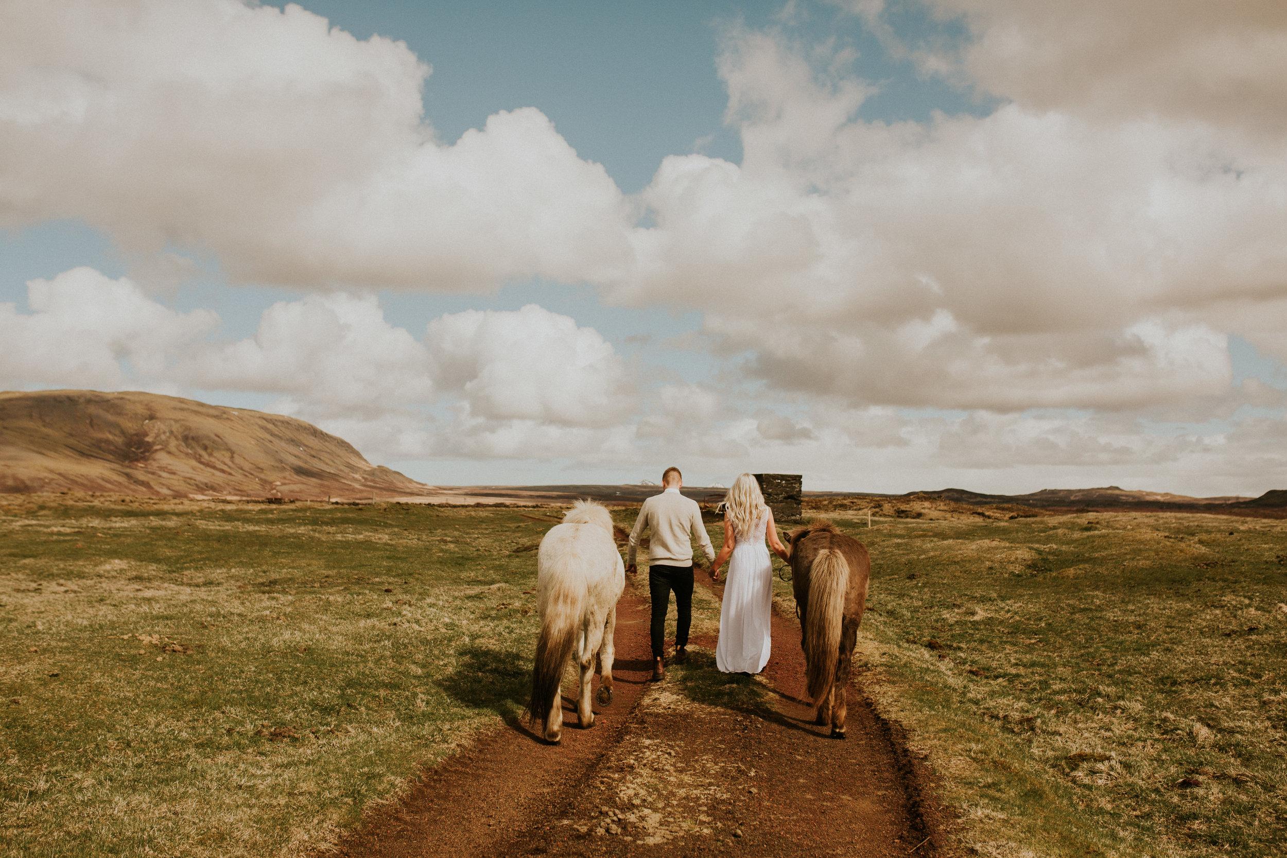 iceland couple horse farm elopement photography