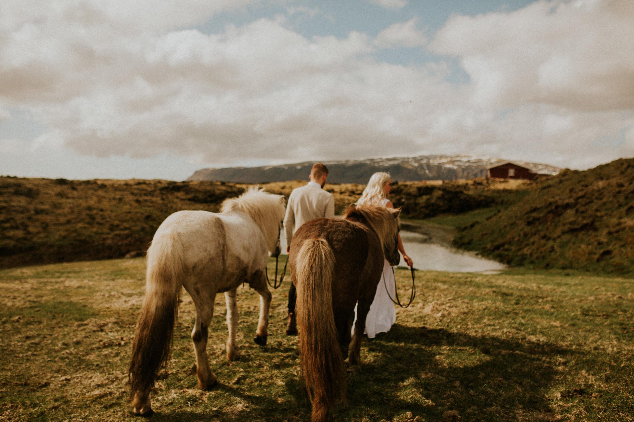 iceland horse farm elopement photographer