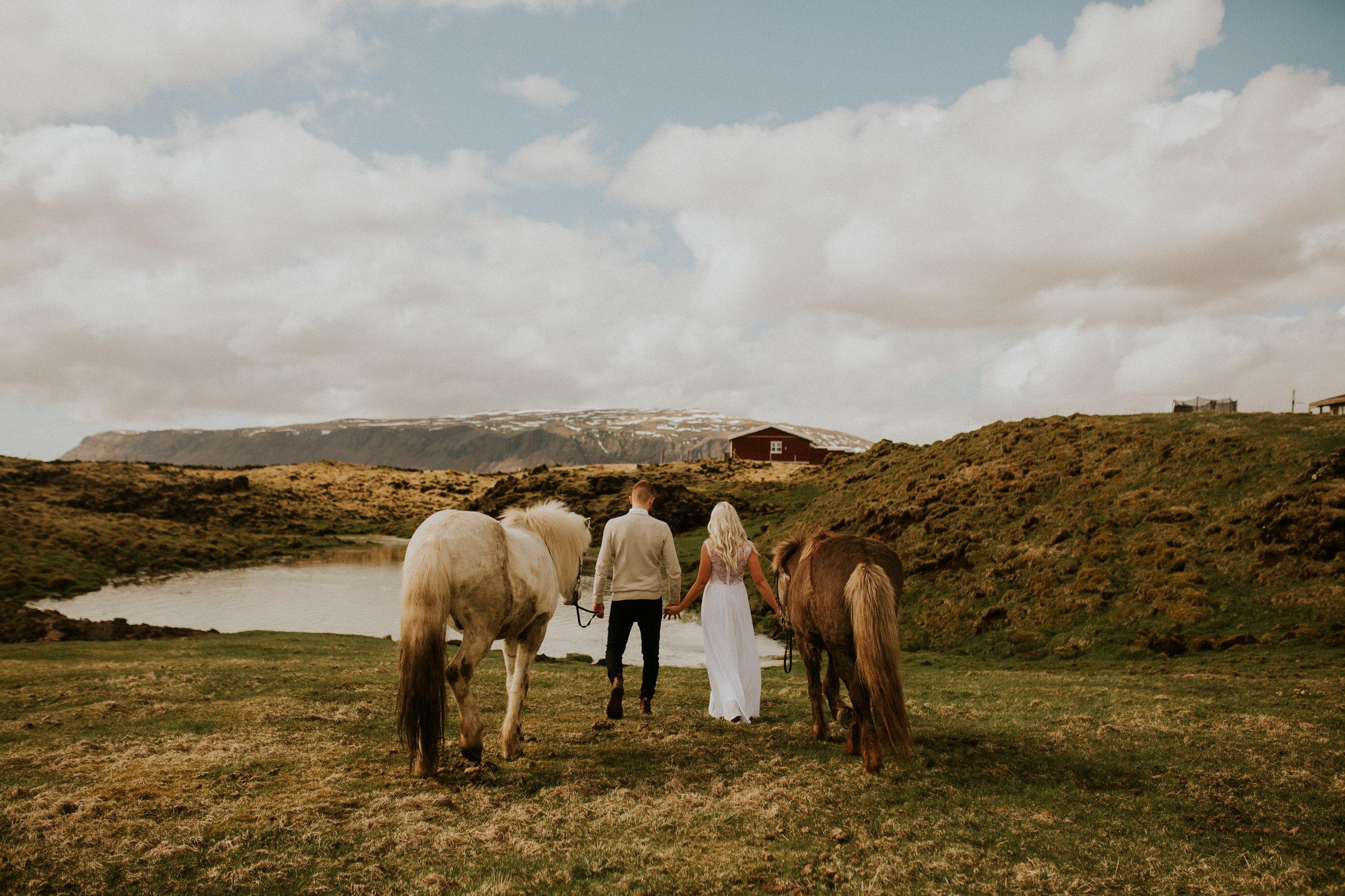 iceland wedding photographer horse farm elopement