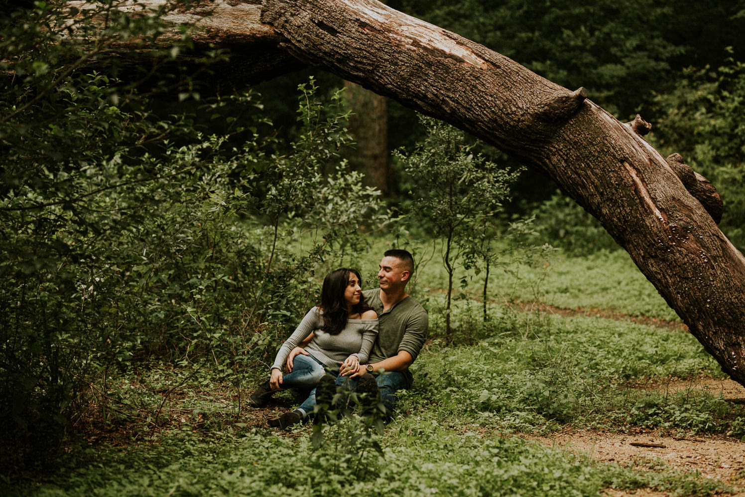 san antonio engagement photography under a curved tree