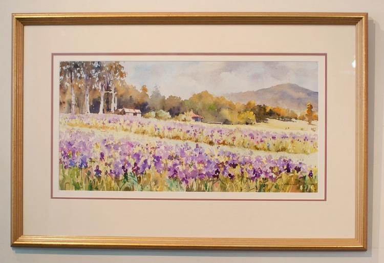 30_watercolour-custom-framing-gold-frame-triple-matting-beautiful-framing.jpg