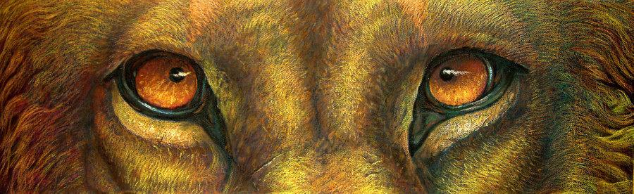 Lion's Eyes by Aldem Butcher