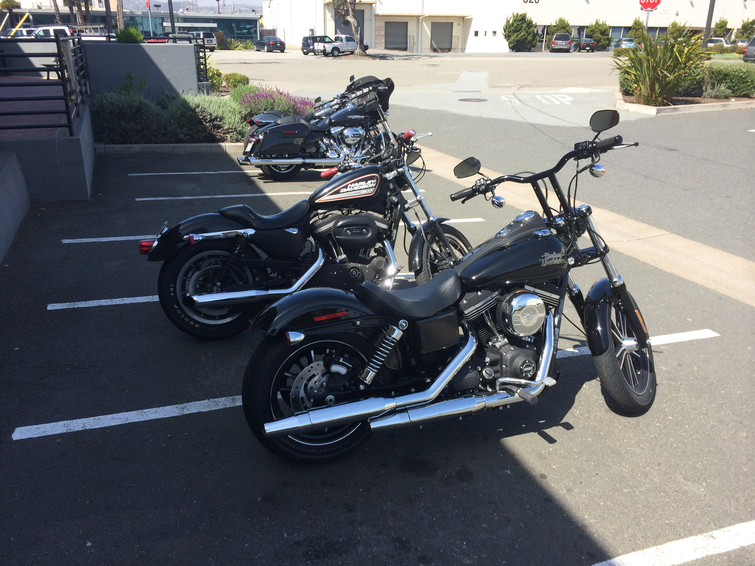 """…um yes please"".  Here's the Street Bob next to my 883R… they make a pretty good looking couple eh?"