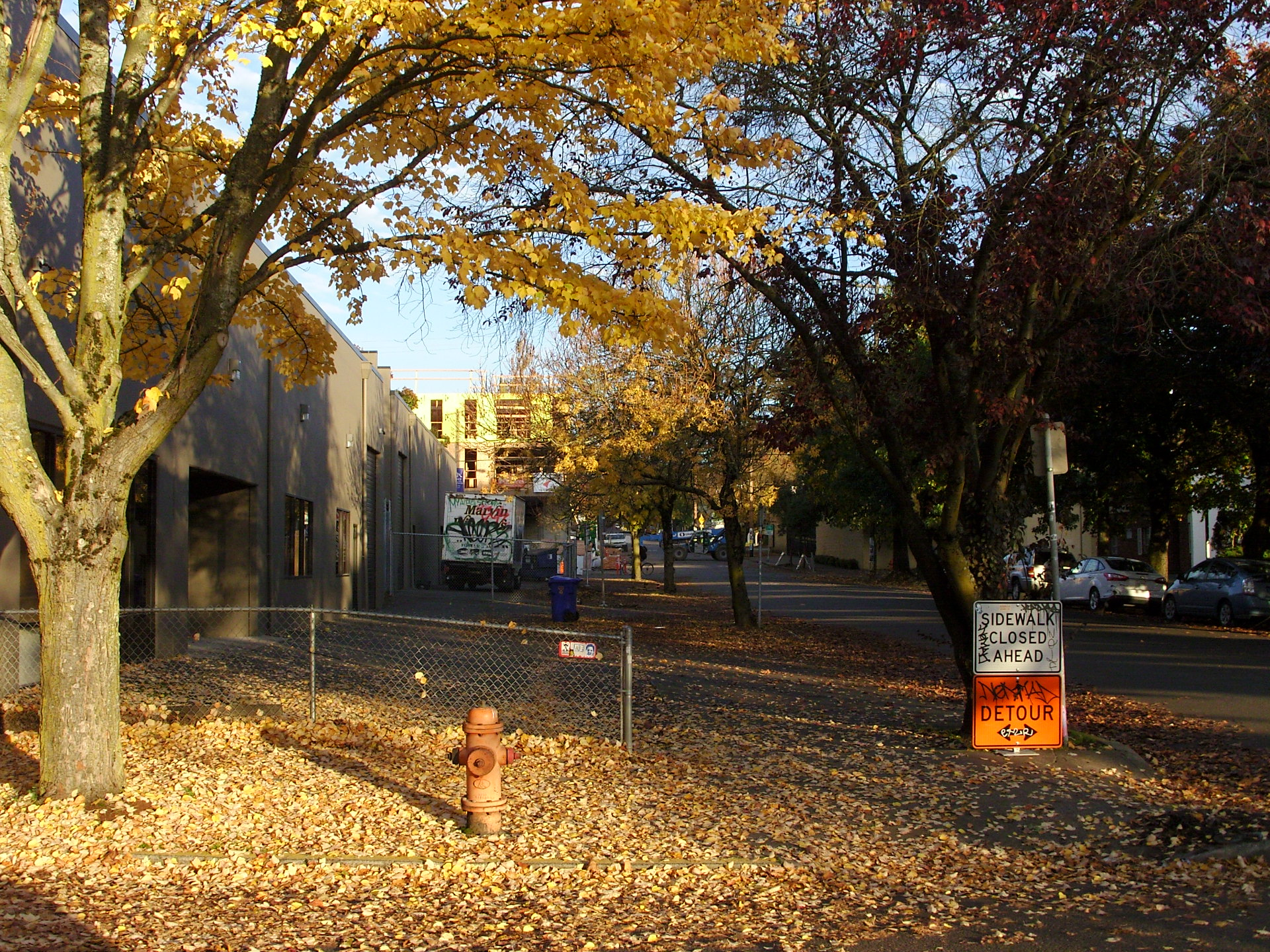 …like I said, those leaves were changing all over Oregon and closing sidewalks as they fall to the ground.
