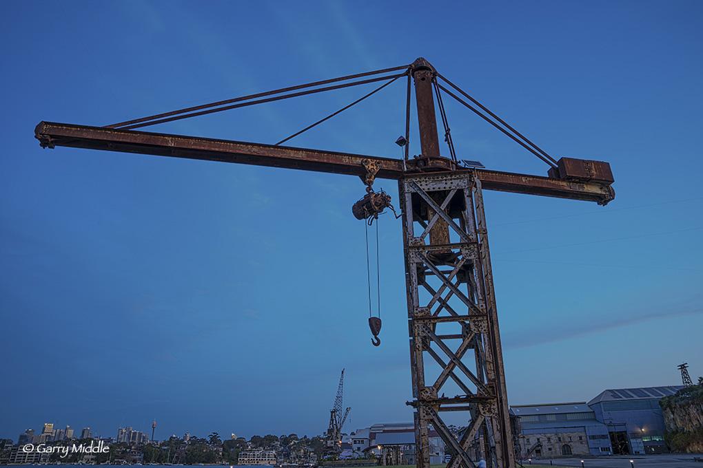 Crane early evening.jpg