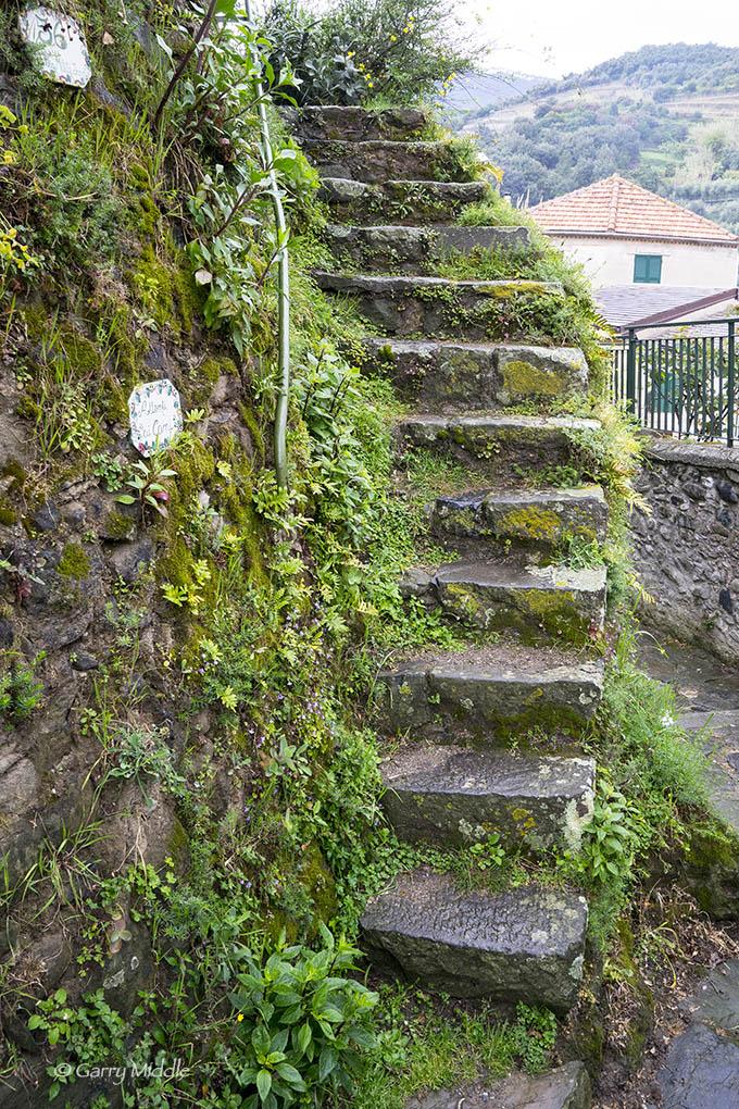 Monterosso steps.jpg
