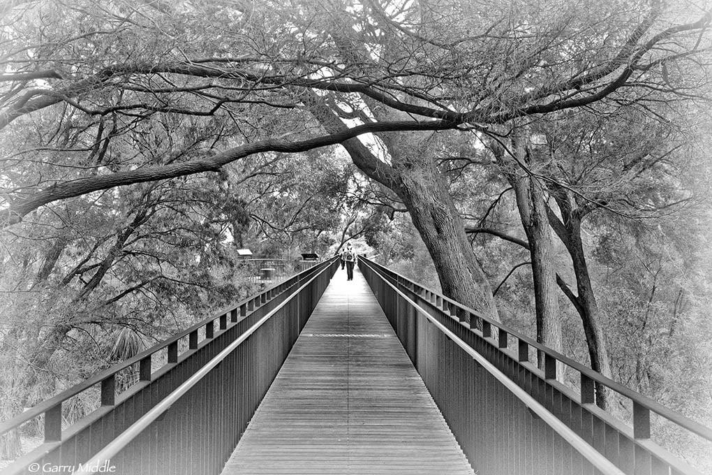 Kingspark walkway.jpg
