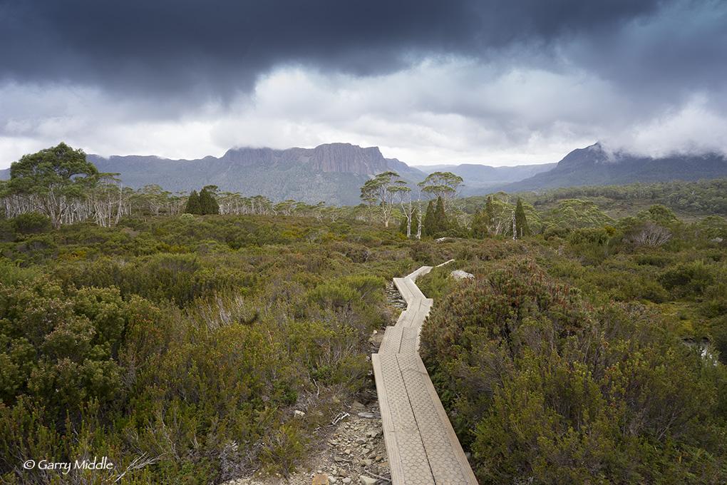 Latest project - photographs form the Overland Track, Tasmania