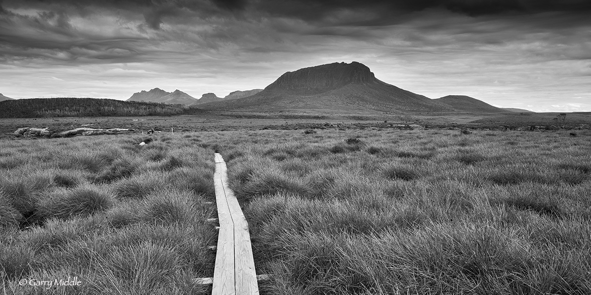 Small_Copyright_Mt Pelion plain view B&W.jpg