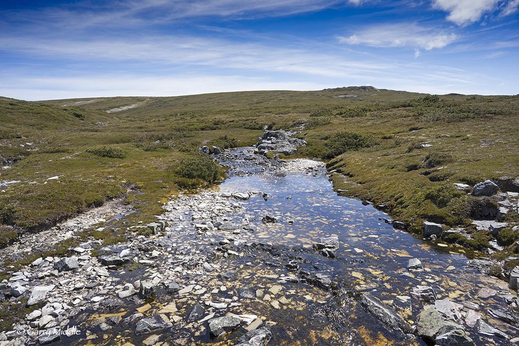Small_Copyright_Plateau Creek.jpg