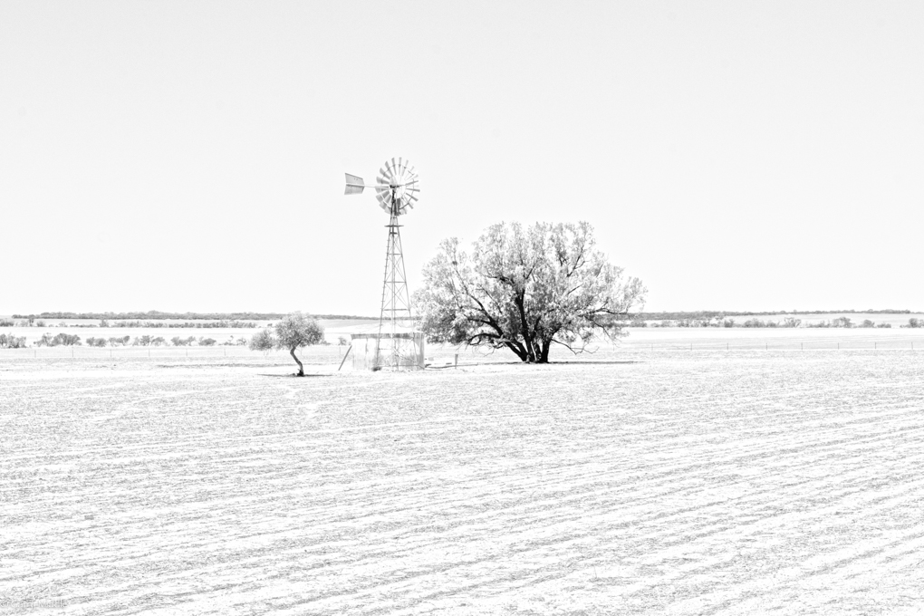 Small_copyright__B&W_Midwest drought.jpg