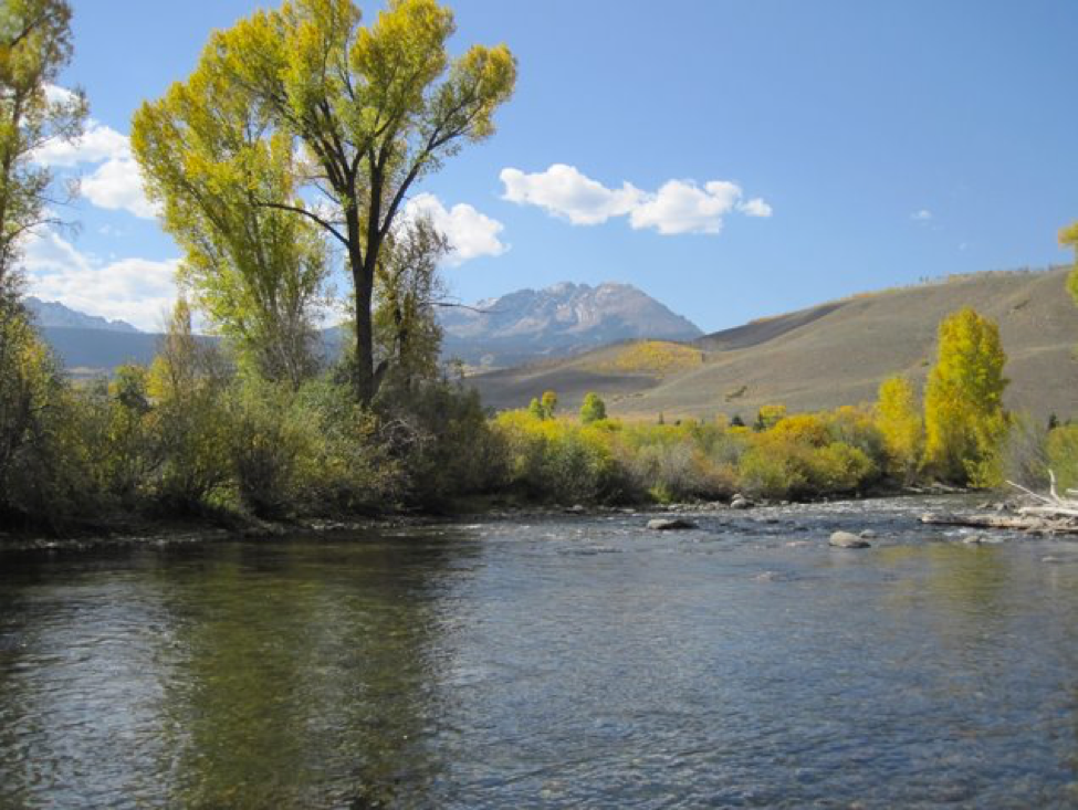 Colorado's Blue River, a favorite fly fishing retreat