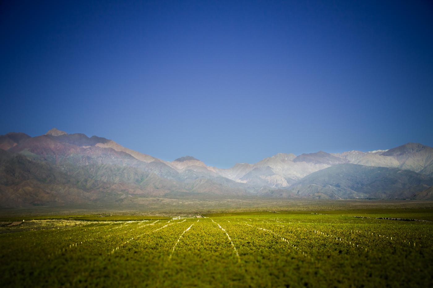 ThePerfectHideaway_La Morada02.jpg