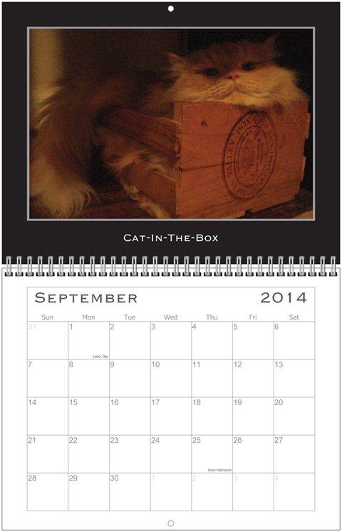Simon Calendar Aug.