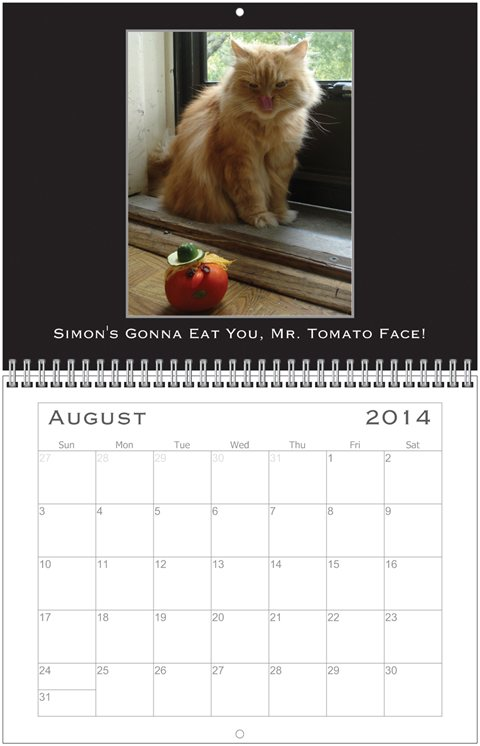 Simon Calendar Aug.