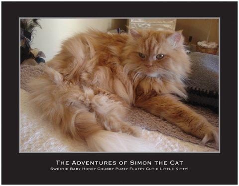 Simon Calendar Cover