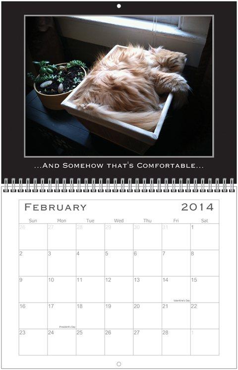 Simon Calendar Feb.