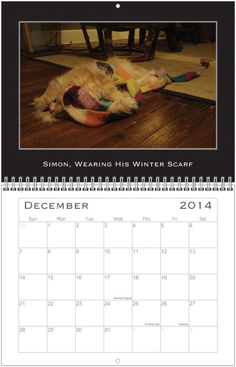 Simon Calendar Dec.