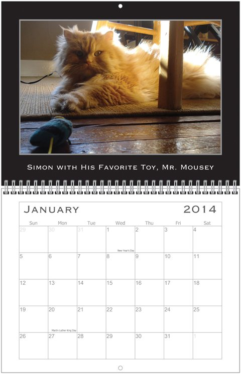 Simon Calendar Jan.