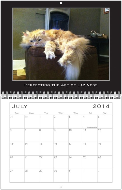 Simon Calendar July