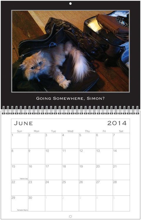 Simon Calendar June