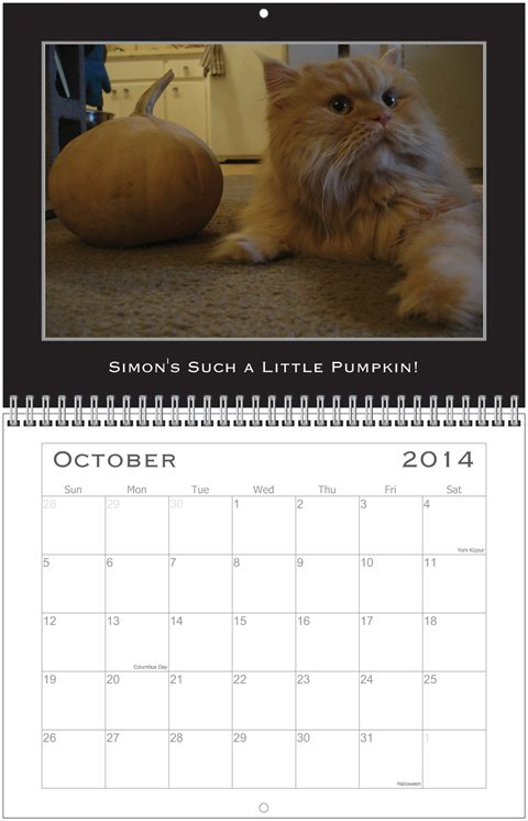 Simon Calendar Sept.
