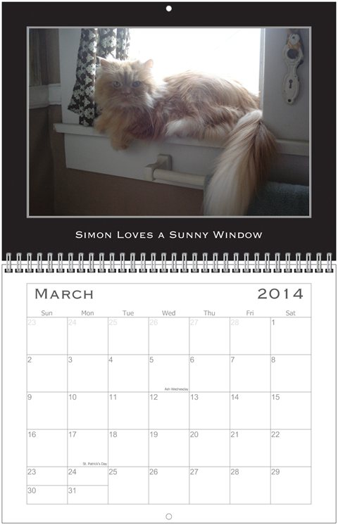Simon Calendar March