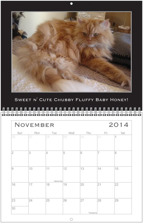 Simon Calendar Nov.