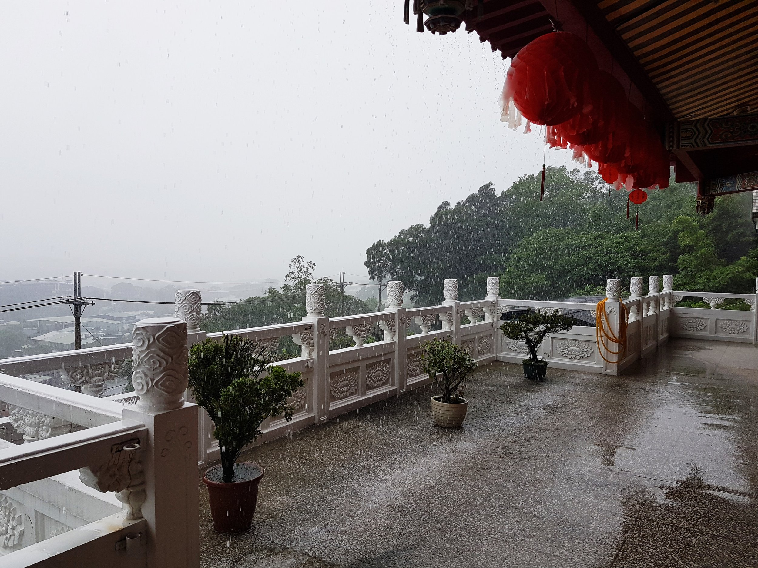Whiteout in a downpour at the temple