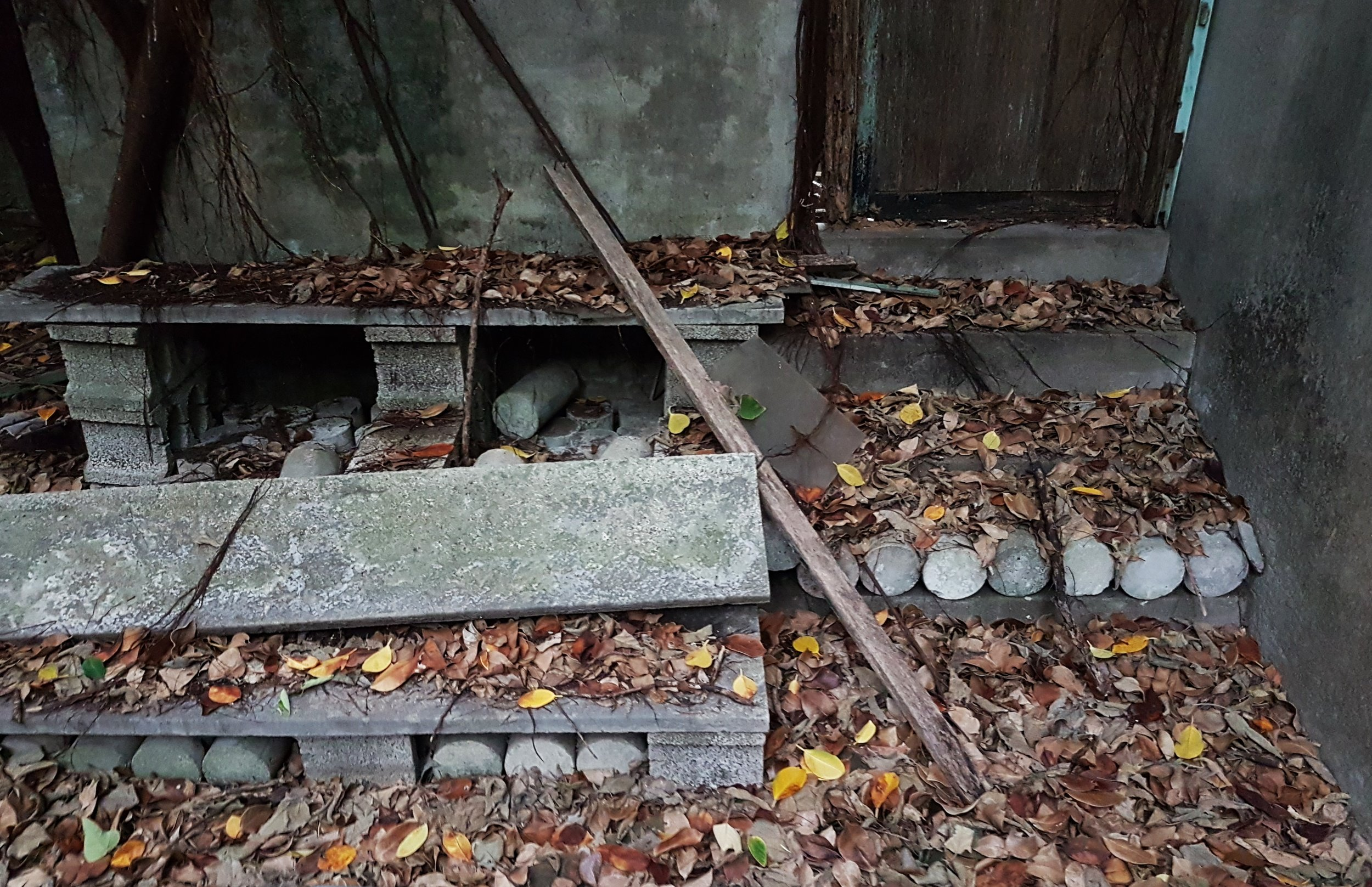 An unusual floor outside a building next to the hall. I think this may have been a bathroom or kitchen but the door was jammed. I haven't seen many round stones like these before and am not sure what they are for.