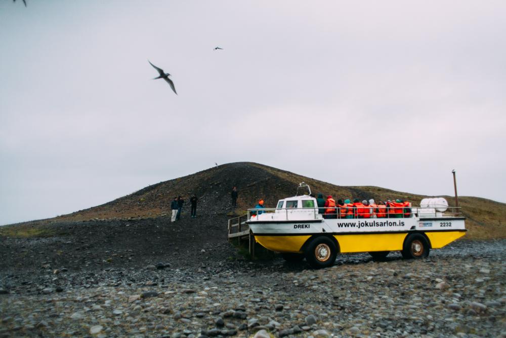 Iceland-Vestmannaeyjar-Reydarfjodur-7.7-11.14-192.jpg