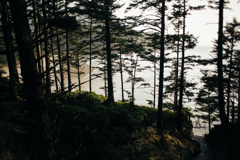 light and canon beach-falcon trail 2.2.15-154.jpg