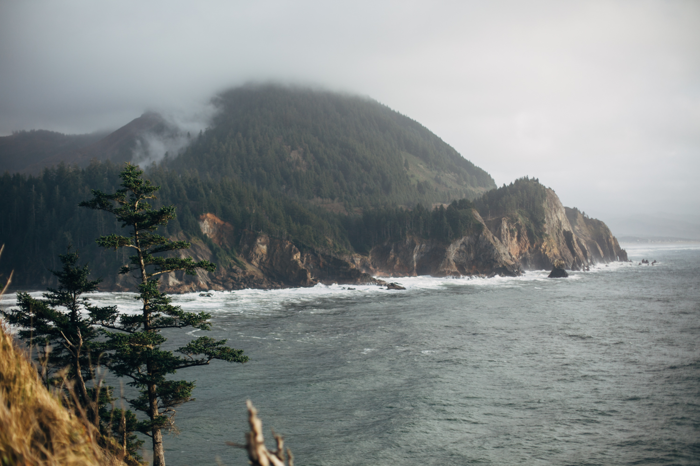 light and canon beach-falcon trail 2.2.15-205.jpg