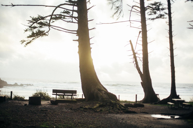 light and canon beach-falcon trail 2.2.15-354.jpg