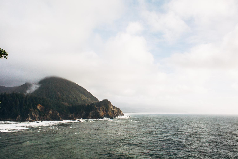 light and canon beach-falcon trail 2.2.15-188.jpg