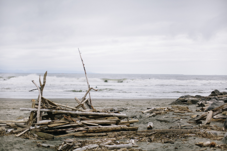 long beach 5.15.15-536.jpg