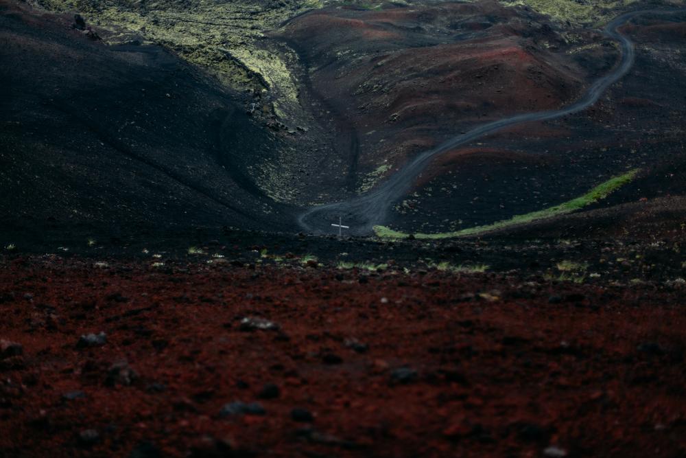 Iceland-Vestmannaeyjar-Reydarfjodur-7.7-11.14-015.jpg