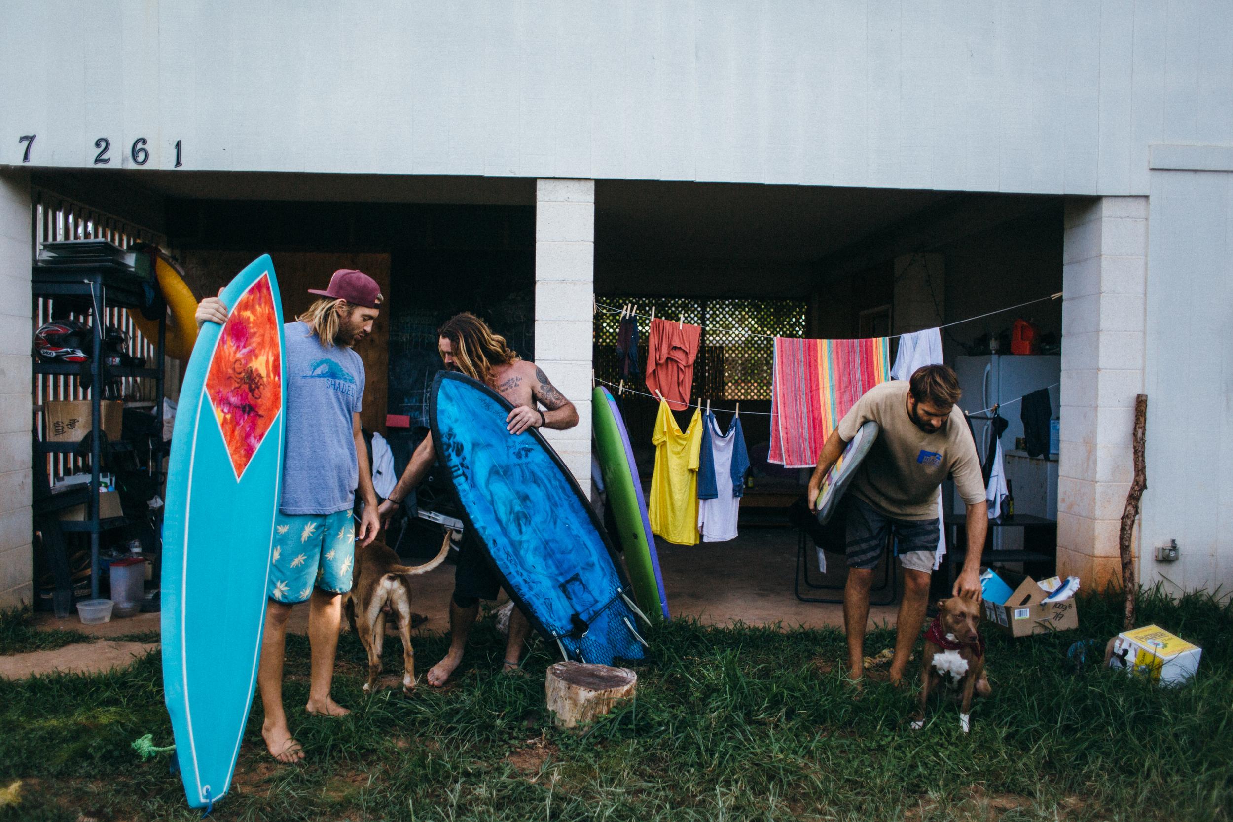 8.16..16 Dog House Designs02091.jpg