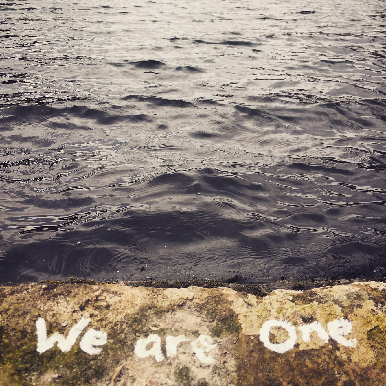 We are One by ali cleary photography