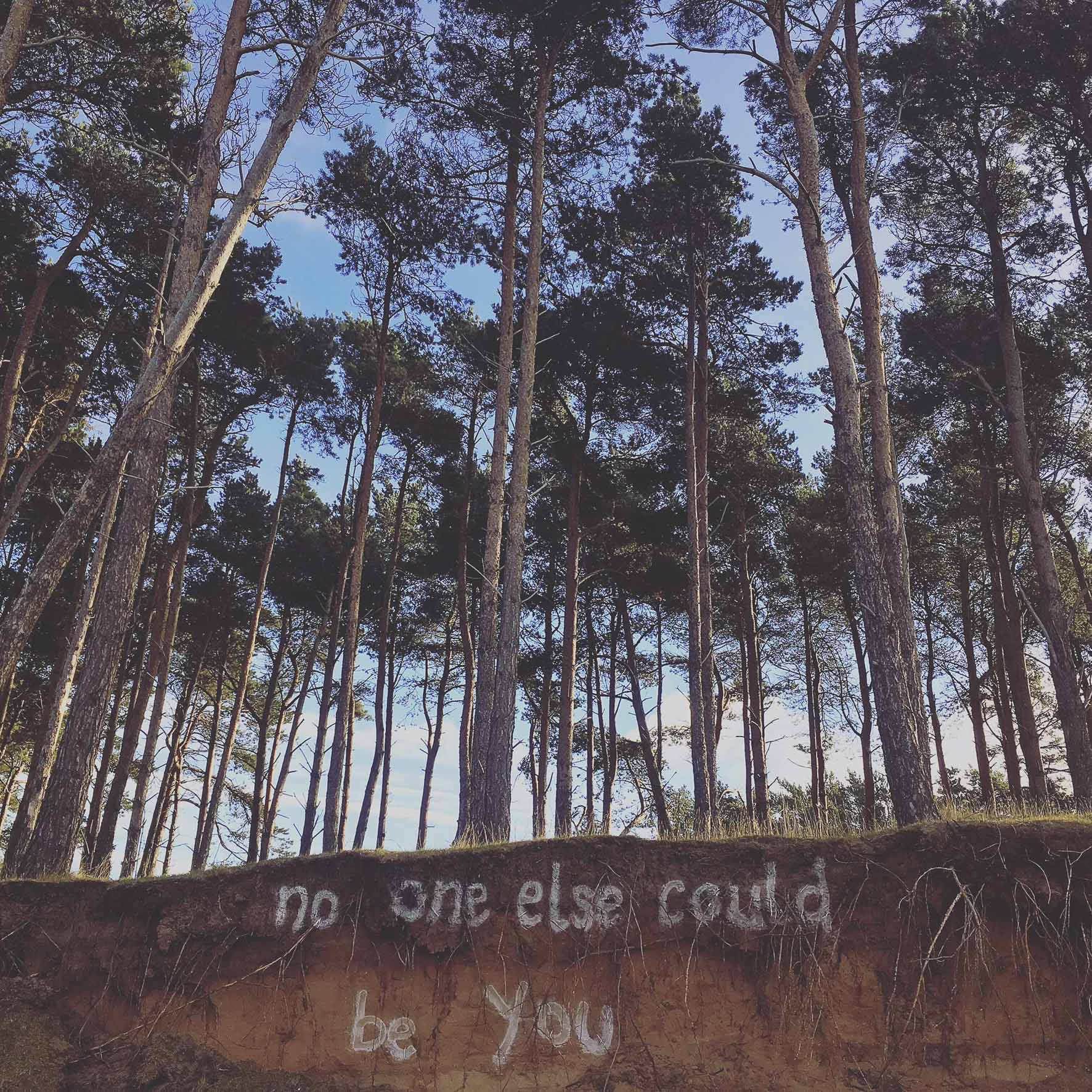 the creative adventurists - no one else could be you