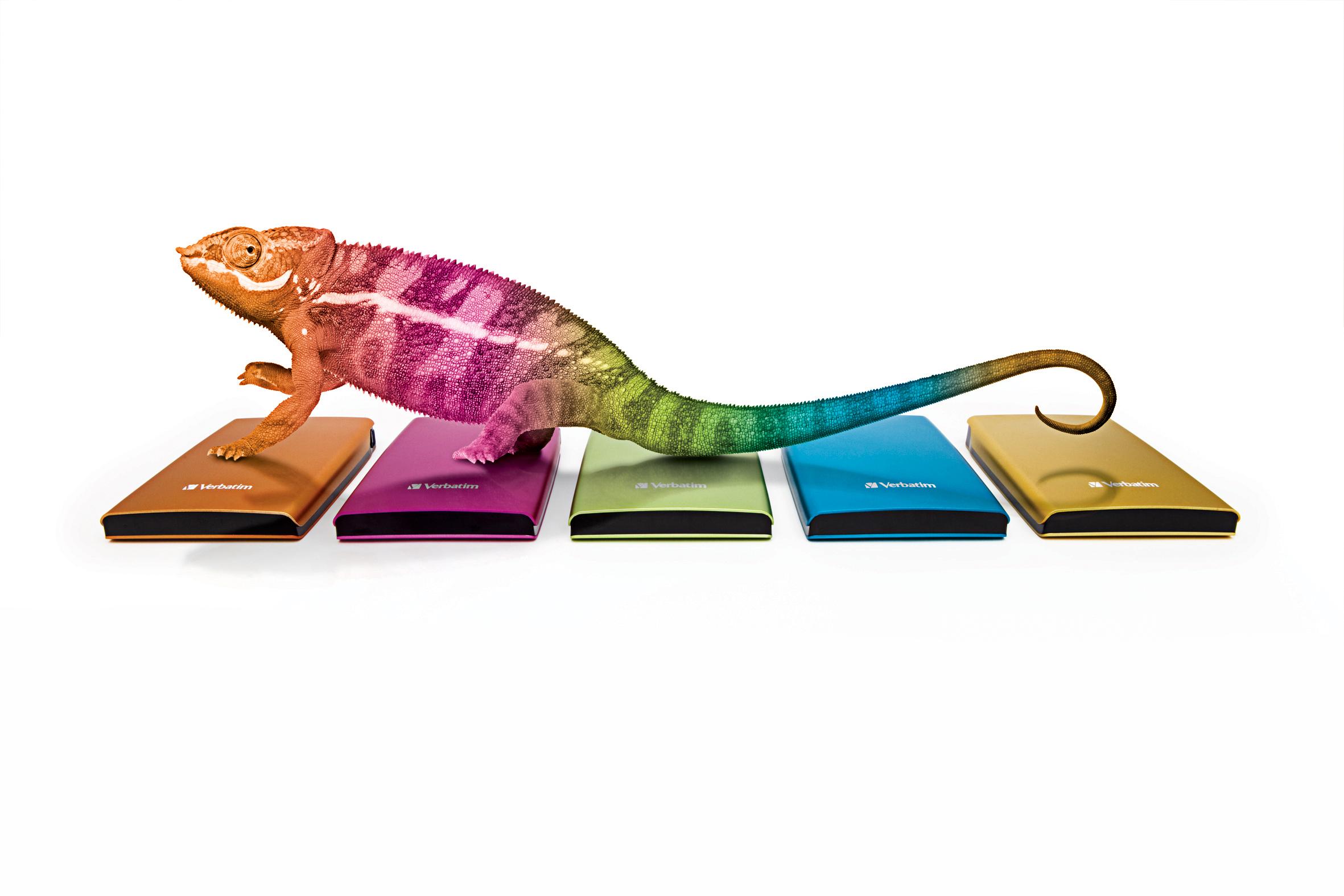 ChameleonBillboard_Graphic_LowRes222.jpg