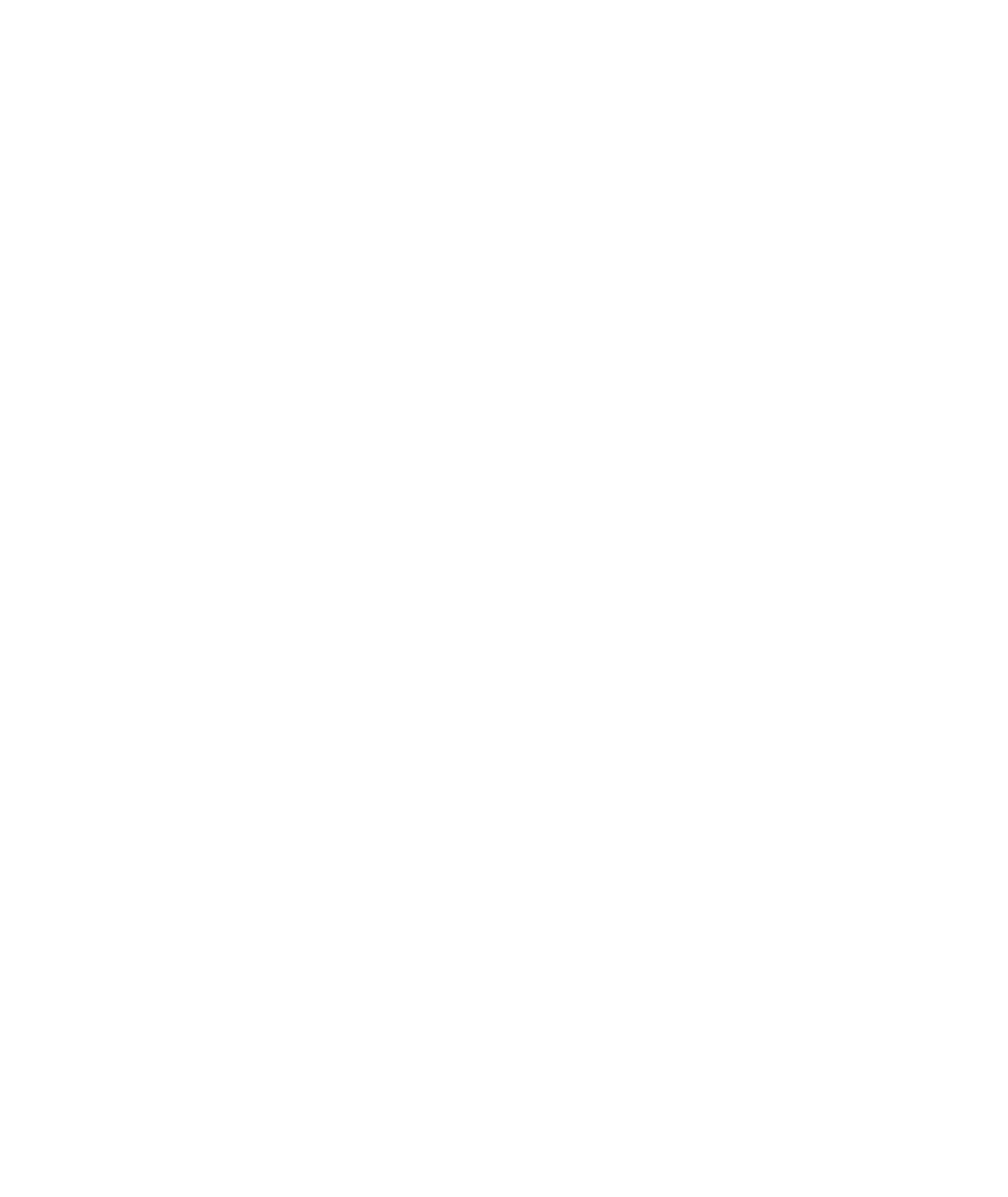 NB-logo-white - Copy.jpeg.png
