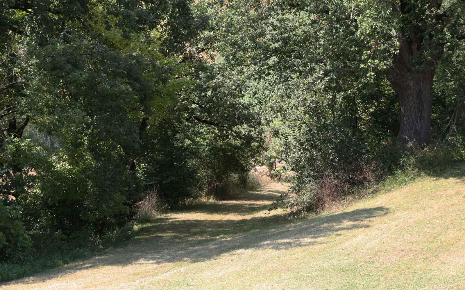 grounds-path-019.jpg