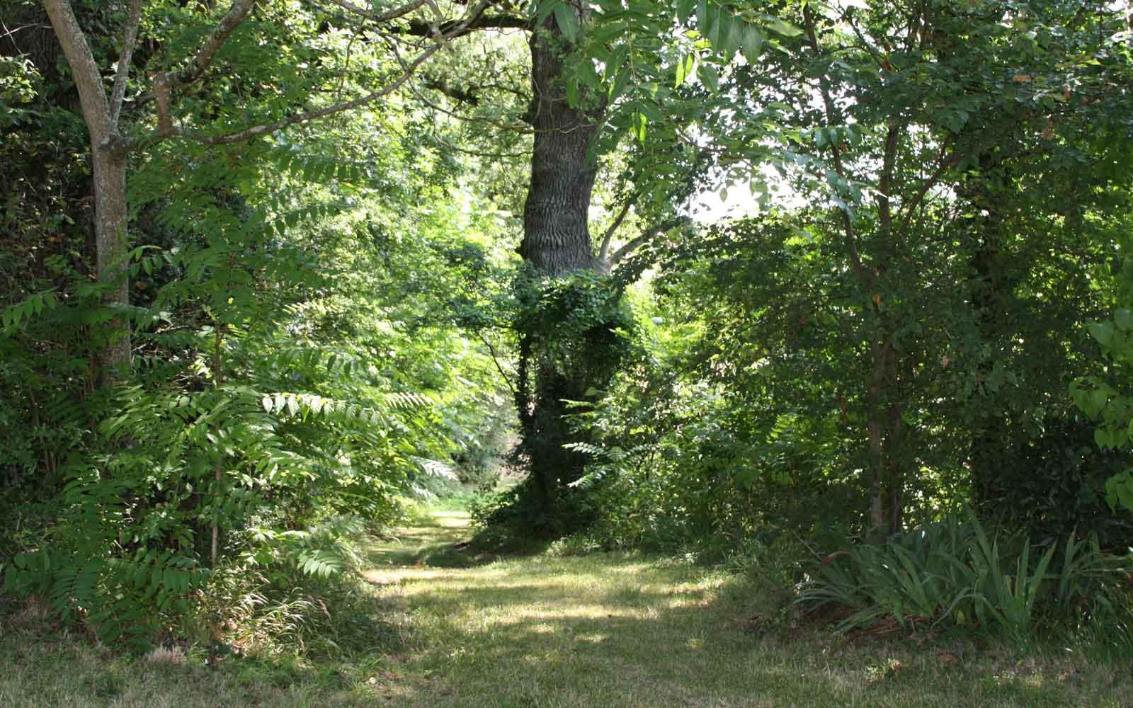 grounds-path-024.jpg