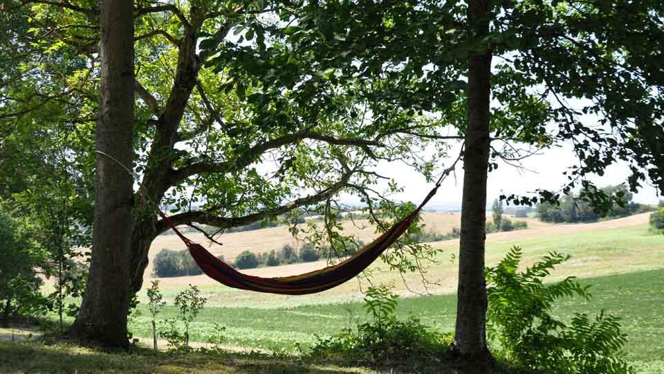hammock-01.jpg